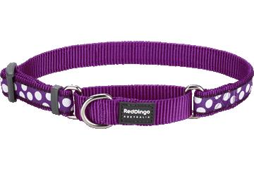 Red Dingo Martingale Collar White Spots Purple MC-S5-PU