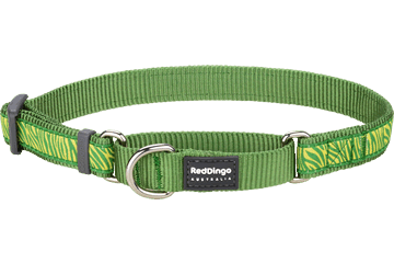 Red Dingo Martingale Collar Safari Green MC-SA-GR