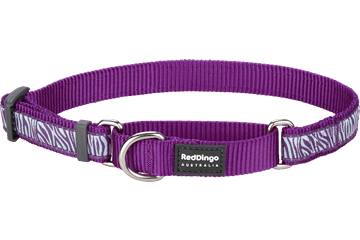 Red Dingo Martingale Collar Safari Purple MC-SA-PU