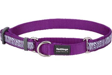 Red Dingo Martingale Collar Safari Purple MC-SA-PU