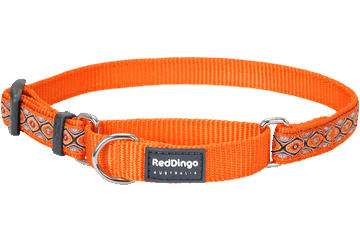 Red Dingo Martingale Collar Snake Eyes Orange MC-SE-OR