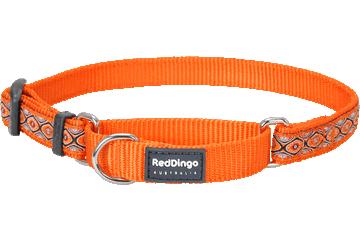 Red Dingo Martingale Collar Snake Eyes Orange MC-SE-OR