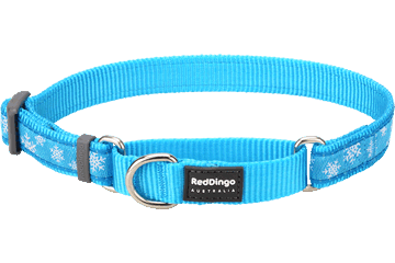 Red Dingo Martingale Collar Snow Flake Turquoise MC-SF-TQ