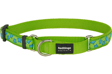 Red Dingo Martingale Collar Stars Lime Green MC-ST-LG