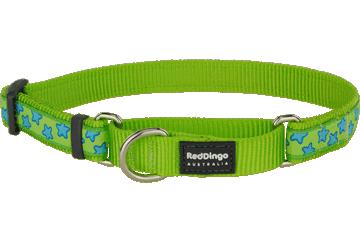 Red Dingo Martingale Collar Stars Lime Green MC-ST-LG
