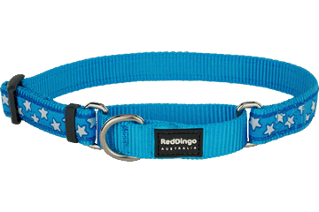 Red Dingo Martingale Collar Stars Turquoise MC-ST-TQ