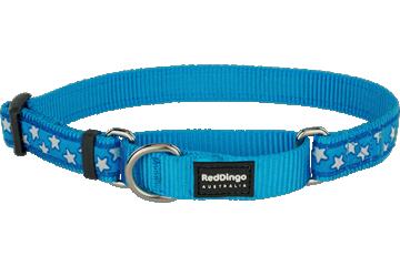 Red Dingo Martingale Collar Stars Turquoise MC-ST-TQ