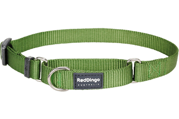 Red Dingo Martingale Halsband Klassiek groen MC-ZZ-GR