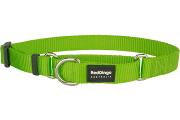 Red Dingo Martingale Collar Classic Lime Green MC-ZZ-LG