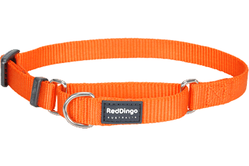 Red Dingo Zug-Stop Halsband Klassisch Orange MC-ZZ-OR