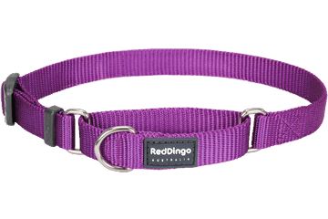 Red Dingo Martingale Halsband Klassiek purper MC-ZZ-PU