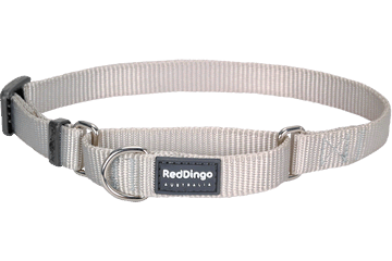 Red Dingo Martingale Collar Classic Silver MC-ZZ-SI