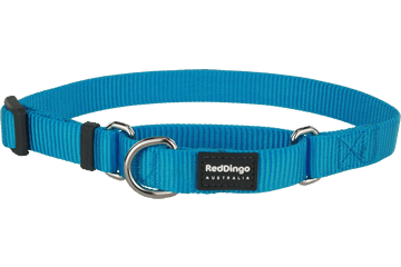 Red Dingo Martingale Halsband Klassiek Turquoise MC-ZZ-TQ