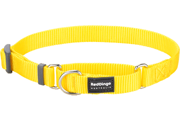 Red Dingo Martingale Halsband Klassiek geel MC-ZZ-YE