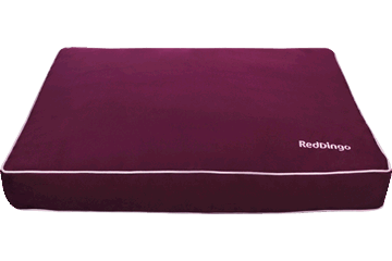 Red Dingo Mattress Violett MT-MF-PU